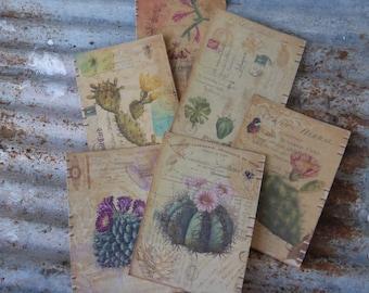 Succulent notecards - paper goods - card making supplies - smash books - journals - cactus notecards - succulent - australia