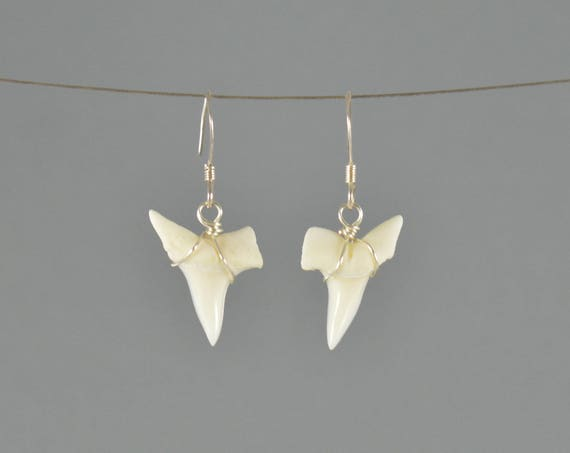 Shark Tooth Earrings Small Size Shark Tooth Jewelry Shark Earrings Fossil Jewelry Fossil Earrings Simple Earrings Beach Earrings Fossil