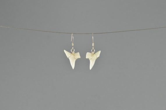 Mako Shark Tooth Earrings