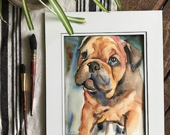 Bull dog puppy painted in watercolor