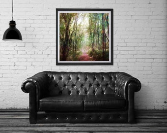 Silent Serenade - PHOTO, rustic forest, woodland decor, tree photography, magical forest, enchanted forest, nature photography