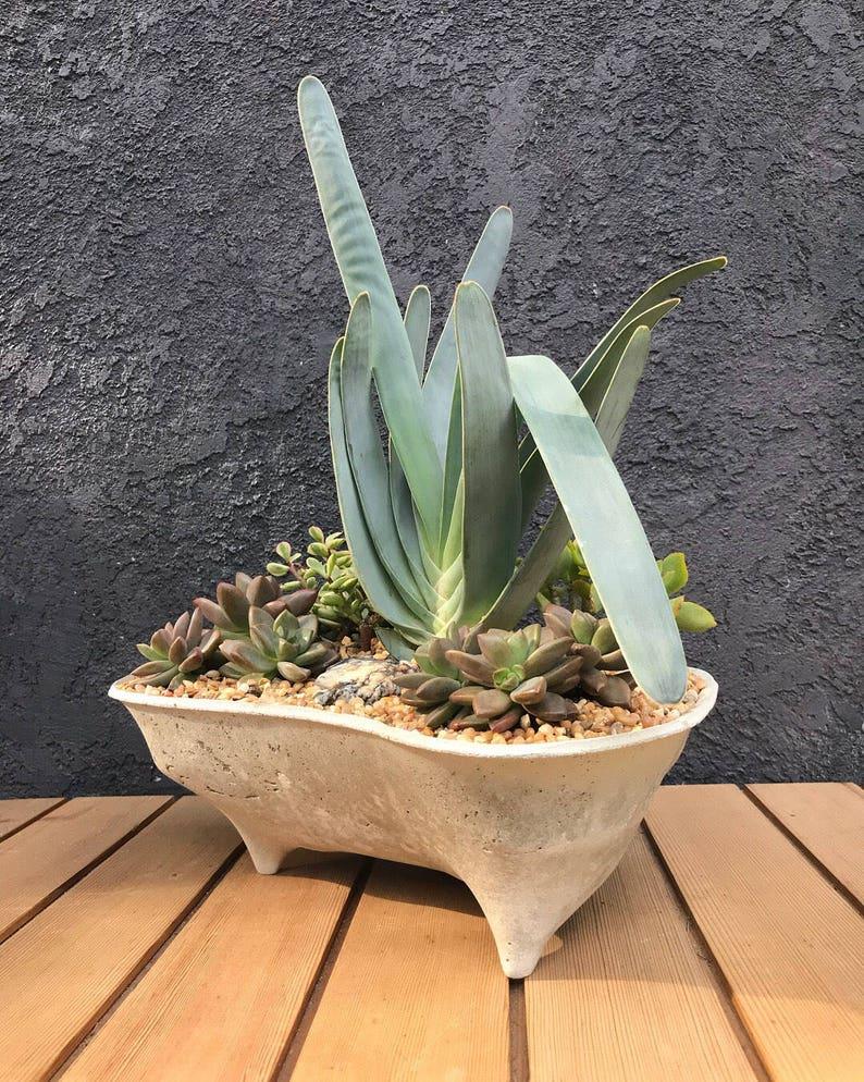 Set of 3 Island concrete planters modern objects for Unique mini succulent landscapes Mini Island Island Planter Rock Island planter