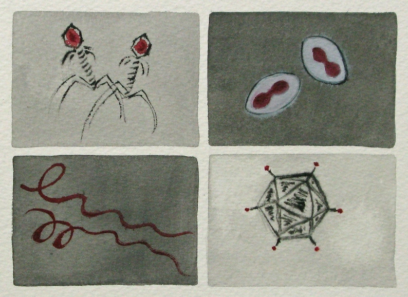 Black White and Red Viruses  original watercolor painting  image 0