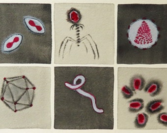 Five Foes and a Friend - original watercolor painting of viruses - microbiology