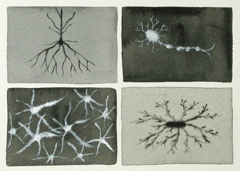 Black and White Neurons   original watercolor of brain cells image 0