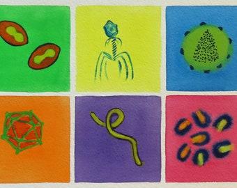 Rainbow of Viruses  - original watercolor painting - microbiology art