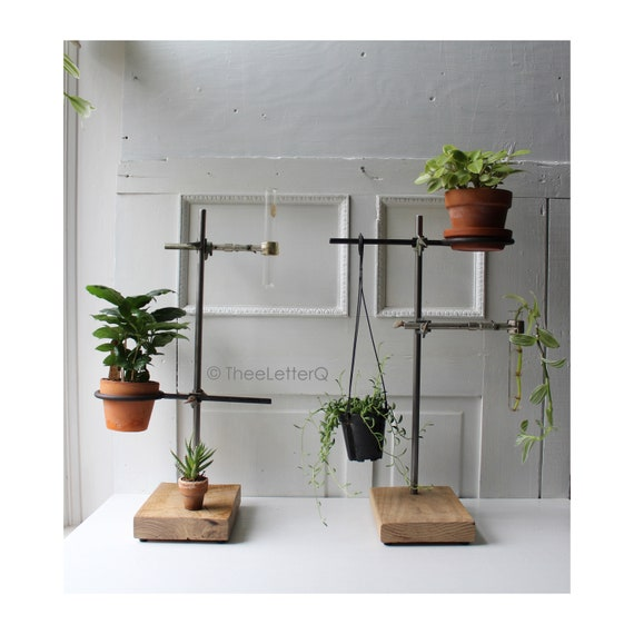 Single Triangular Hanging Test Tube Plant Stand