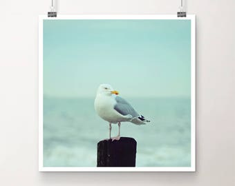 """KunstDruck """"WachDienst"""" - Natur See Meer Ozean Strand Möwe Vogel vintage Foto Fotografie"""