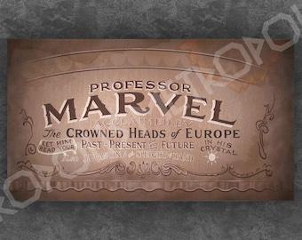 Wizard of Oz Professor Marvel Large Banner