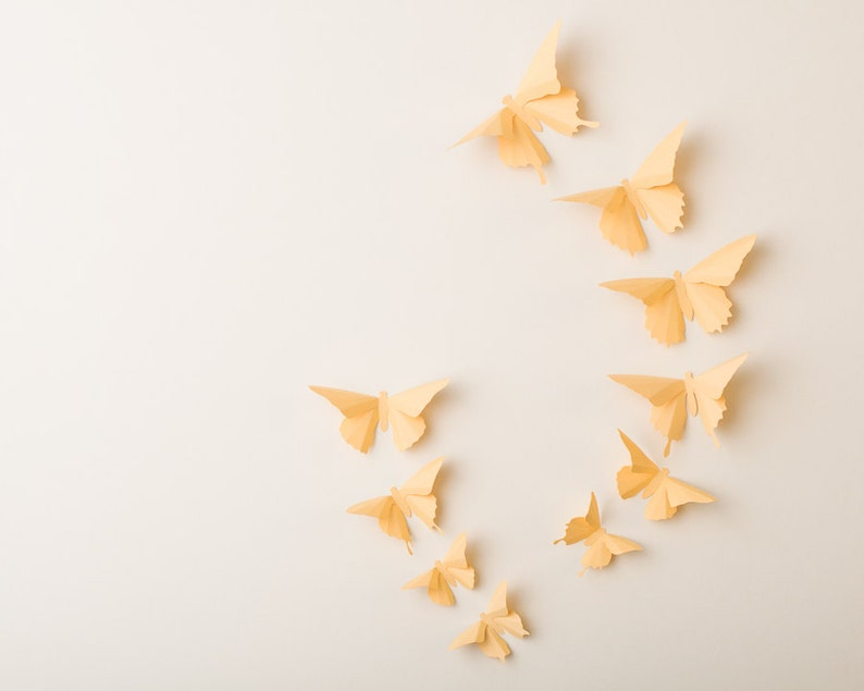 3D Wall Butterflies: Custard Butterfly Silhouettes for Girls image 0