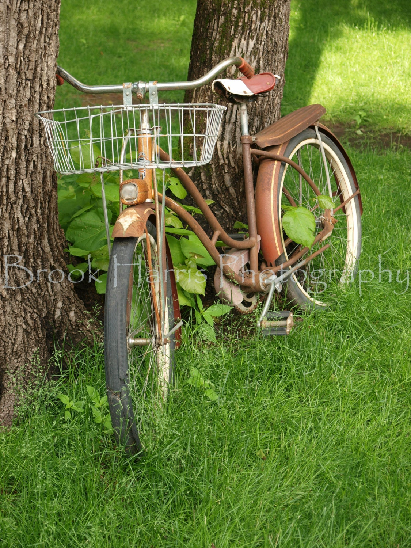 Винтажный велосипед, опираясь на дерево. Художественная фотография, домашний декор, украшение стены 5x7, 8x10, 11x14, 12x16, 16x20, 20x24