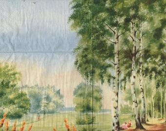 3235 - Set of 3 napkins walk in Birch wood