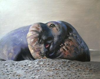 Elephant Seal 11 x 17 print (image 10.5 x 13)  by artist RUSTY RUST / S-68-P