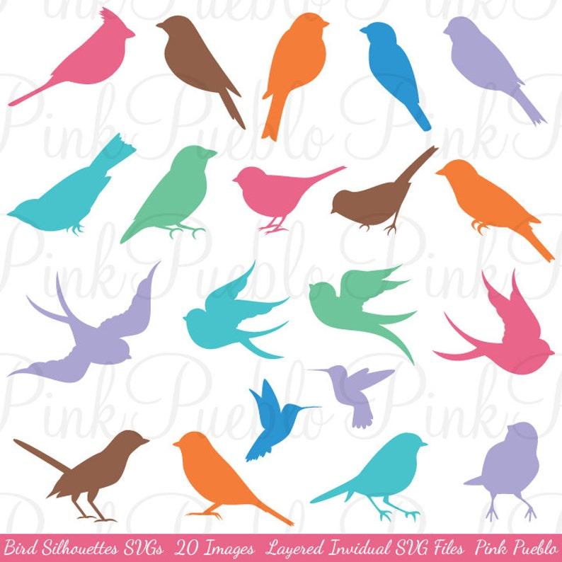 Vogel Silhouetten Svg Vögel Schneiden Vorlagen Kommerziellen Und Persönlichen Gebrauch