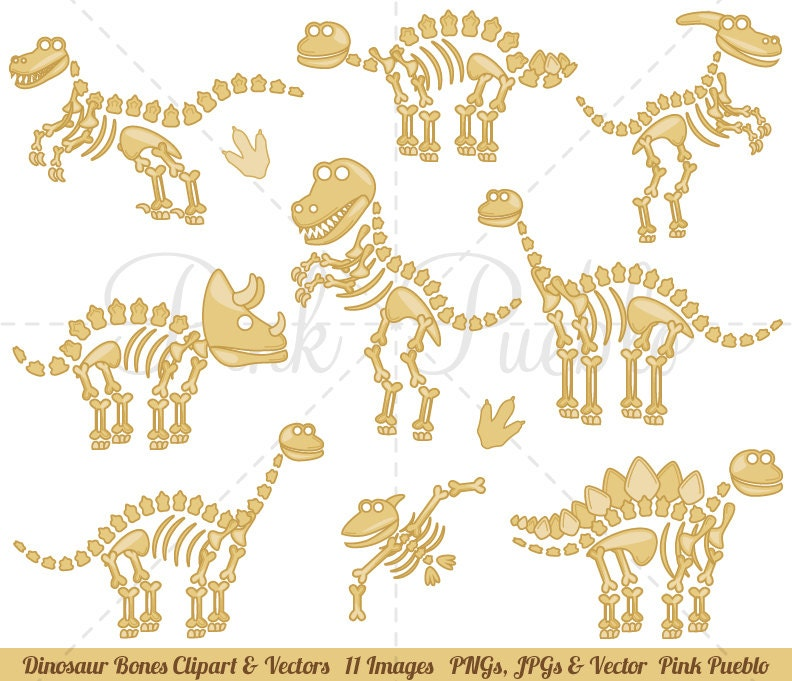 Dinosaur Bones Clipart Clip Art Fossils