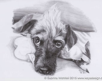 Custom Pet Portrait | your photo to pencil sketch by a professional artist | pet love | personalized gift | pet remembrance