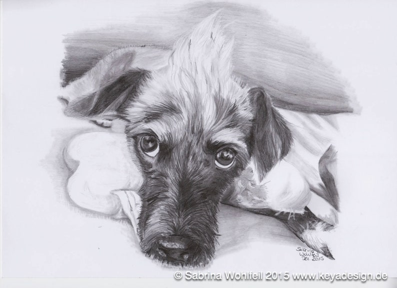 Custom Pet Portrait  your photo to pencil sketch by a image 0