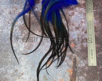 Black Blue XL Rooster Craft Feathers Arts and Crafts Feathers for Hair Accessories Bulk Hair Feathers Black and Blue 25 PCS