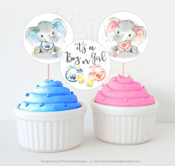 Gender reveal elephant cupcake toppers