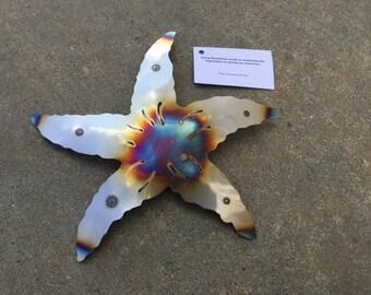 Sea Star Starfish Stainless wall art