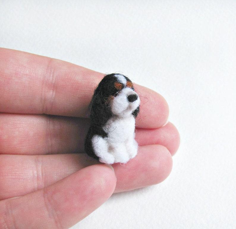Tiny Cavalier King Charles spaniel image 0