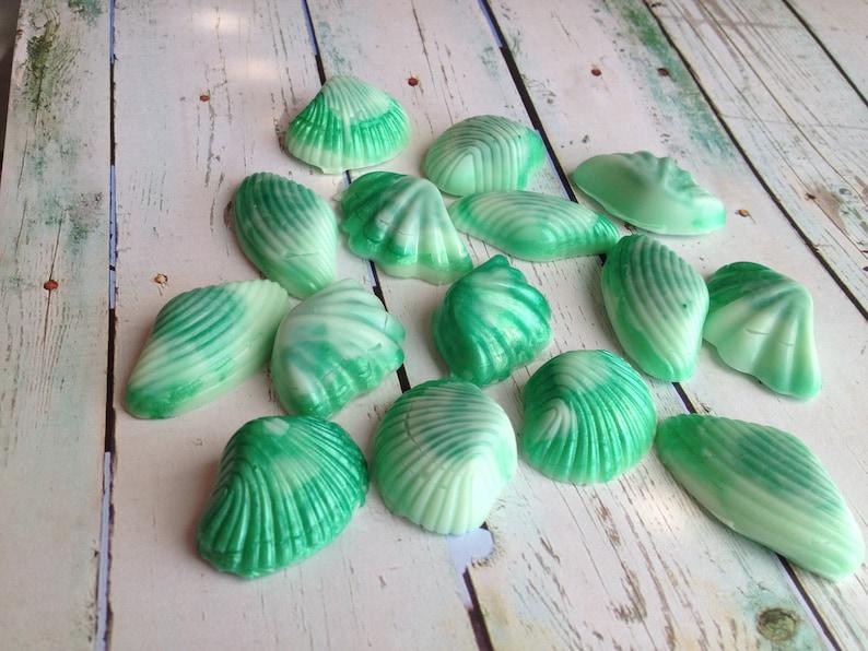 Shell Soap Set of 15 Seashells Nautical Soap Ocean Soap3d image 0