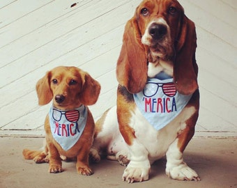 Merica Embroidered Dog Bandana Perfect for Fourth of July