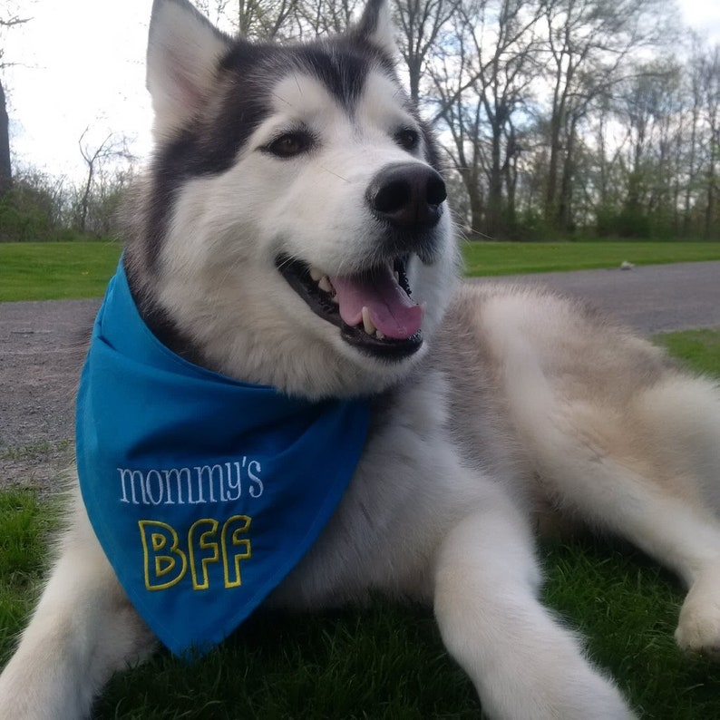 Mommy/'s BFF  Embroidered Dog Bandana