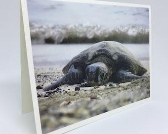 Hawaiian Sea Turtle on the Beach - Glossy Greeting Card
