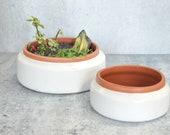 The Theresa Terra Cotta Plant Pot Indoor Terracotta Planter Cacti Succulent Gardens