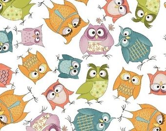 Whoo's Who By Terrie Degenkolb for Windham Fabric 515921 - Owl Fabric