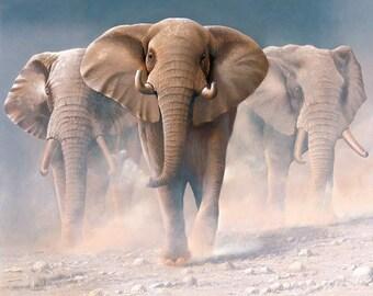 Riley Blake - On Safari Elephant Poster Panel - P10452