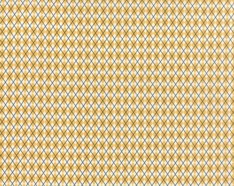Moda -Varsity Kickoff Yellow 5593 17