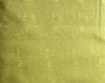 Moda Posh Pumpkins Sandy Gervais Solids Moss - 7521582