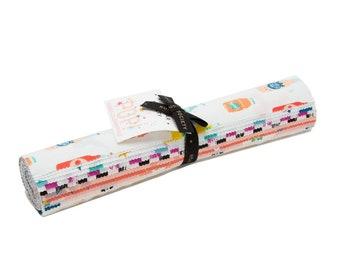 Pop Junior Layer Cake  - Moda - Ruby Star Society - Rashida Coleman Hale - 20 Pieces