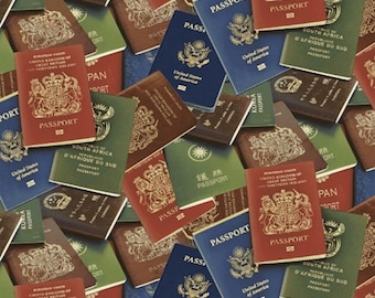 Windham fabrics - Passport to Travel - 50690-X - Passports