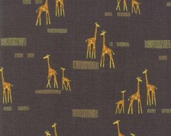 End Of Bolt 1/2 Yard - Safari Life  Giraffe  20647 15 Moda - Stacy Iest Hsu Childrens Novelty Giraffe Life -Black