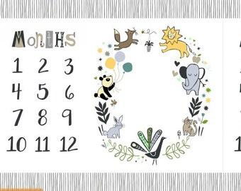 Windham - Dream Baby Milestone Quilt Panel by Jill Mcdonald - 51728DP-X