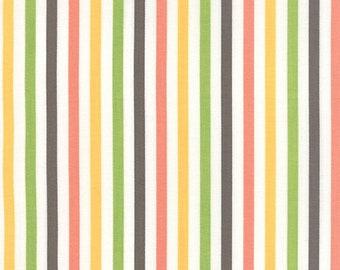 Moda - Prairie 1/4 Inch Stripe - Multi 29006 11