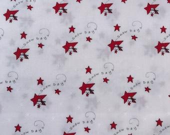 Merry Merry Snow Days - Snow 2940 14 Moda - Bunny Hill Designs