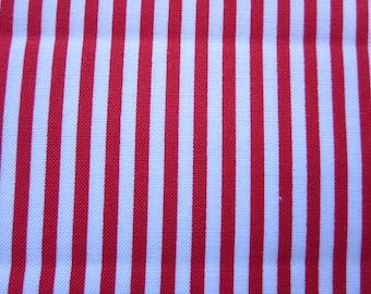Michael Miller Little Red Stripe CX6574