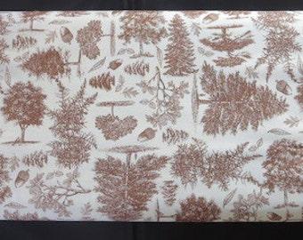 Riley Blake - Trail Mix Nature Fabric - Brown C4011