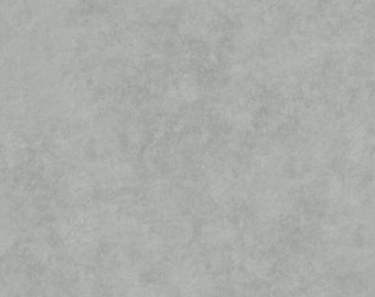 Dove Grey Suede Texture 108in Wide Back  QB410-K - Beautiful Backing by Maywood Studio Collection