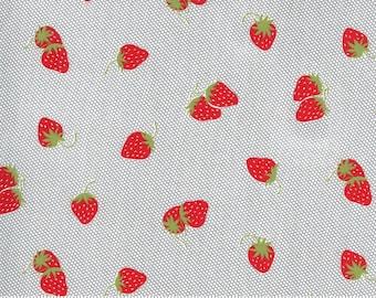 Sunday Stroll - 55223 17 Moda - Berry Patch
