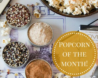 Popcorn Seasoning Packs