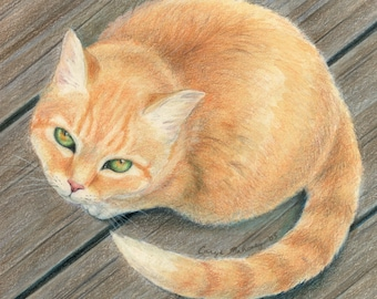 """Orange tabby cat with green and gold eyes, sitting on wooden surface and looking up at viewer - Art Reproduction (Print) - """"Meow"""""""