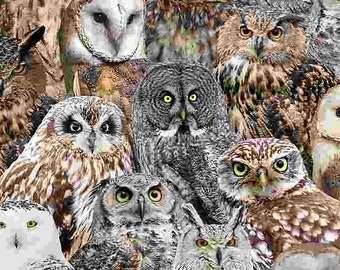 Packed Realistic Owls BIRD-C7947 Timeless Treasures, Quilt Fabric, Quilting Fabric, Woodland Fabric, Owl Fabric, Cotton Fabric By The Yard