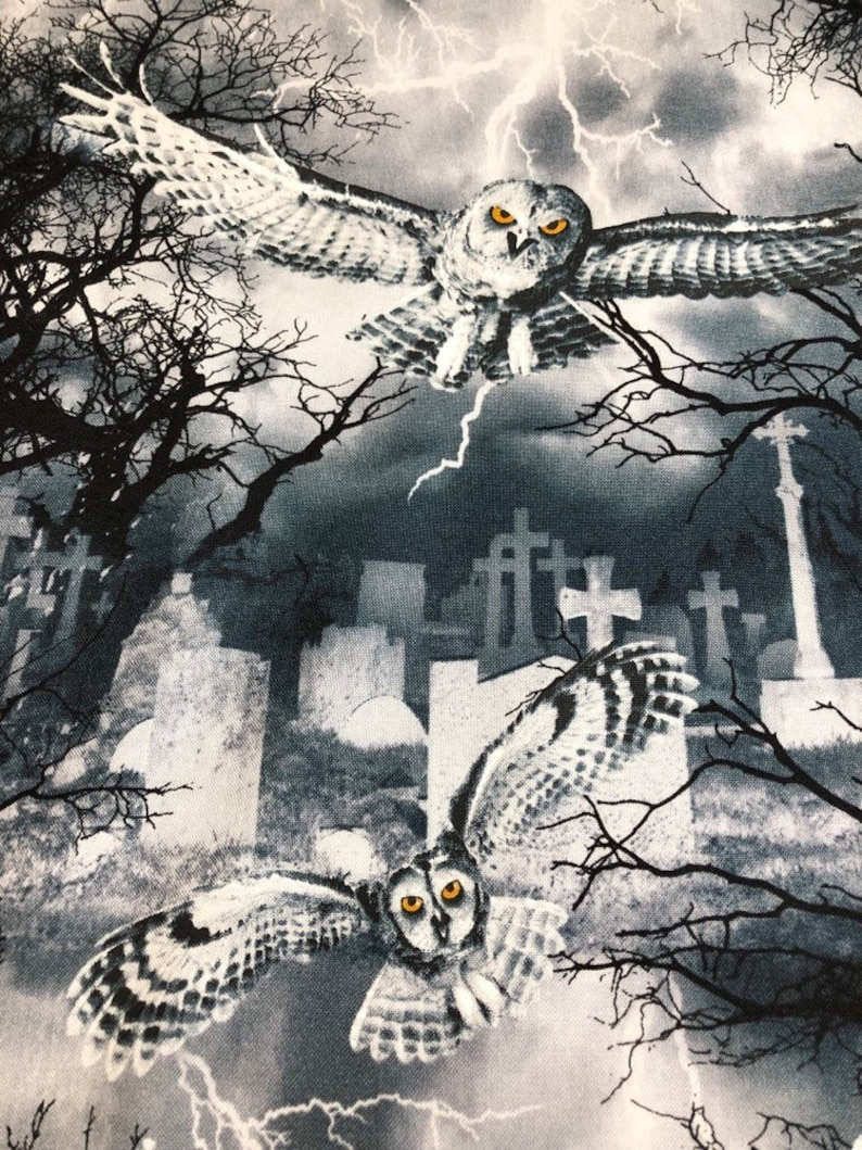 Owls in the Graveyard Wicked Fog C7023 Halloween Fabric image 0