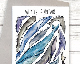Whales of Britain Greeting Card, Whale poster, whale card, whaley love you, Nursery, Wildlife Print, Whale Illustration, art card, WPC01