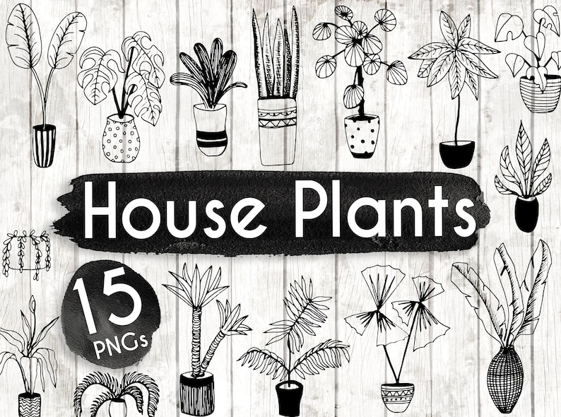 House Plant Clipart  Hand Drawn Plants Clipart  Potted Plant image 0